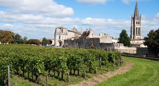 Saint-Emilion Day Trip from Bordeaux