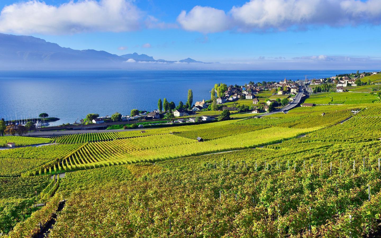 Montreux hotellia