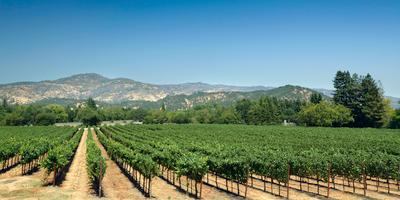 Yountville hotels