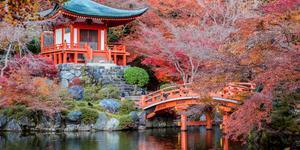 Leiebiler i Kyoto