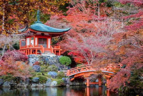 Offerte per hotel a Kyoto
