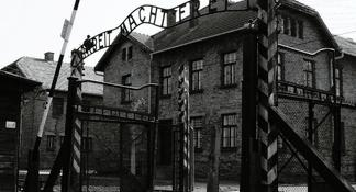 Excursión de medio día al Museo de Auschwitz-Birkenau desde Cracovia