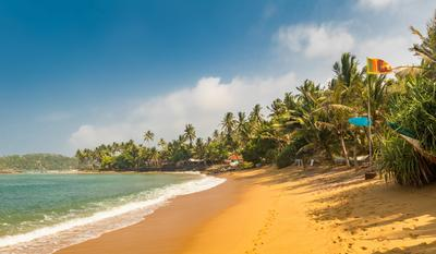 Hotels in Negombo from €6/night - Search for hotels on KAYAK
