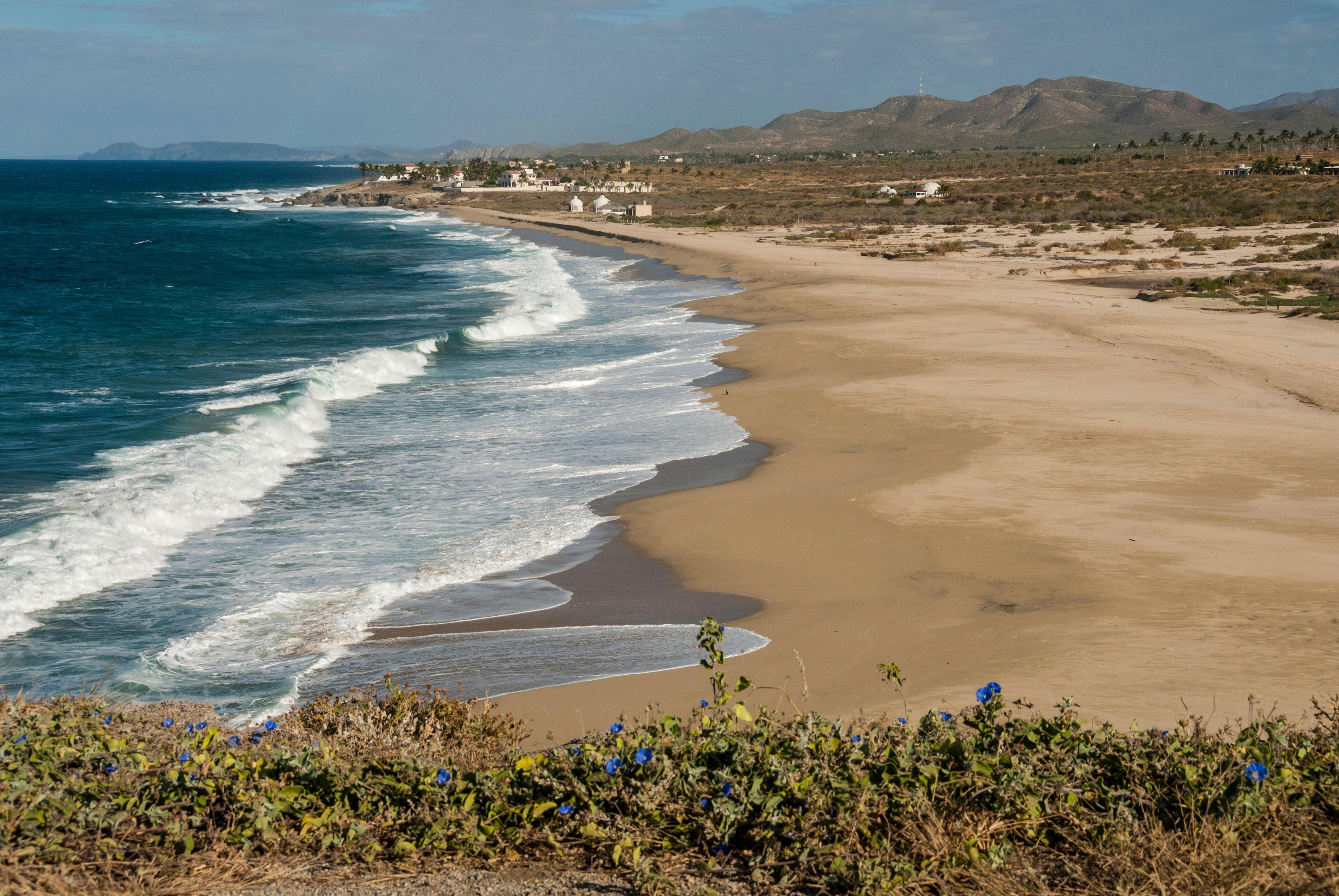Rp isabel lucas beach top jpg
