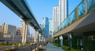 Tokyo Grand Sumo Tournament Viewing Tour