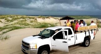 Wild Horse Tour from Virginia Beach