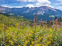 Crested Butte hotels