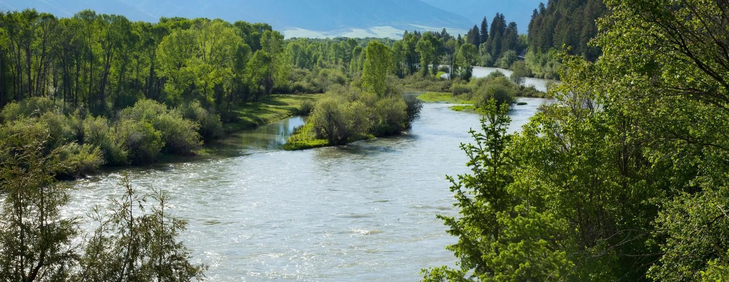 Idaho Falls Pet Friendly Hotels