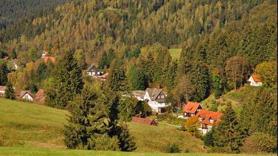 Altenau (Niedersachsen) hoteles