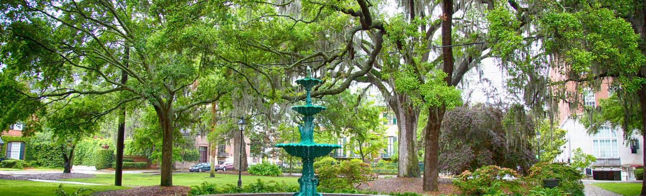 Savannah hotellia