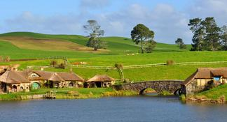 Hobbiton Movie Set and Waitomo Caves Full Day Tour departing Auckland