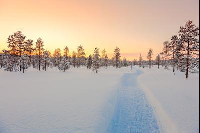 Anetjärvi hotels