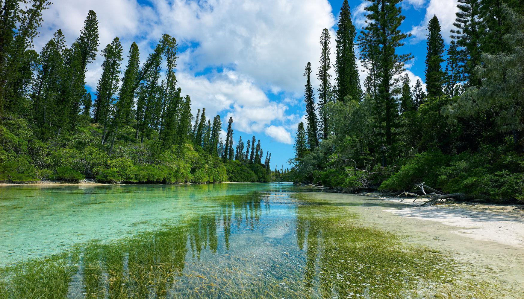 Coches de alquiler en Nueva Caledonia