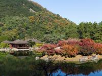 Takamatsu hotels