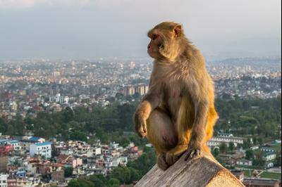Hotéis em Katmandu