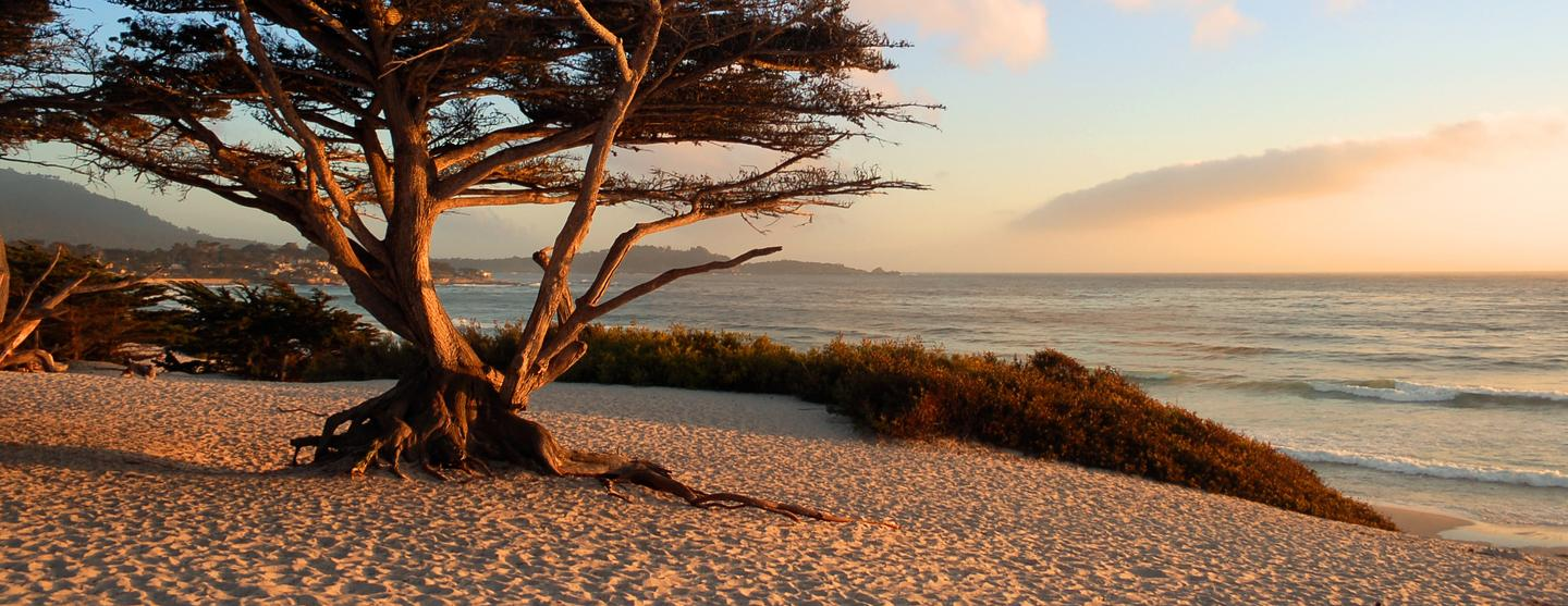 Carmel-by-the-Sea Boutique Hotels