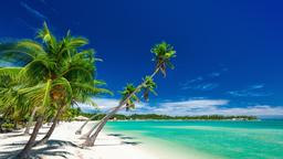 Hyrbilar i Fiji