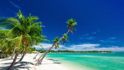 Biludlejning i Fiji