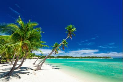 Holidays in Fiji from £1376 - Search Flight+Hotel on KAYAK