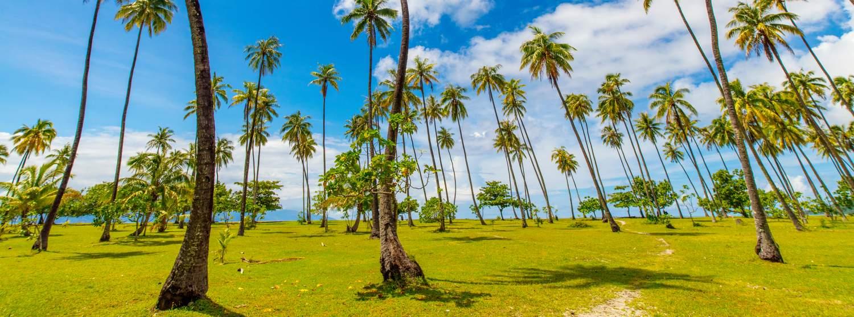 Temae, Moorea, Polynésie française