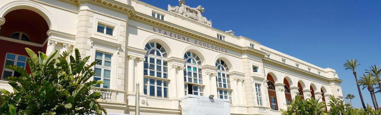 Hotels in Neapel