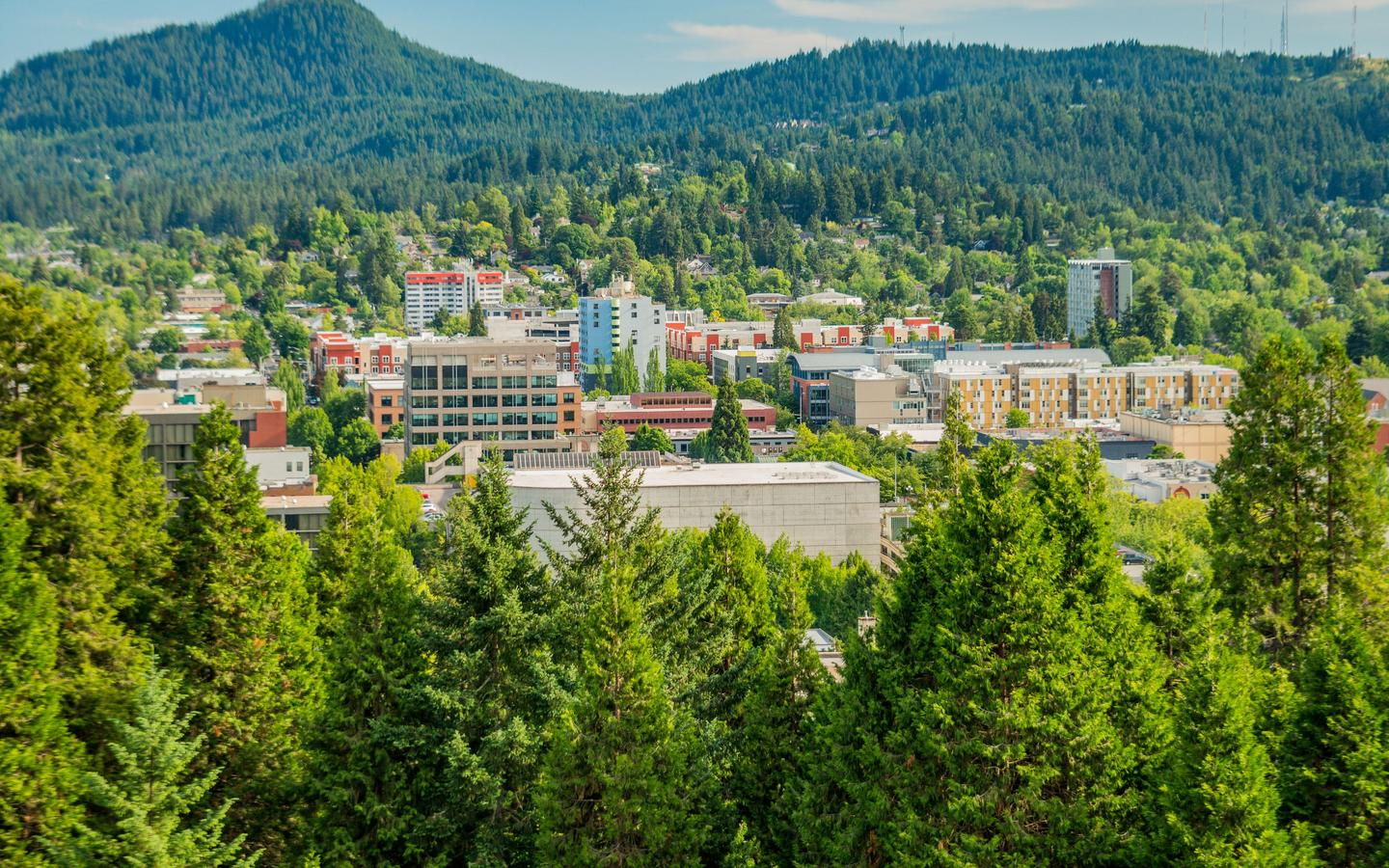 Cheap Flights From San Francisco To Eugene From 230 Kayak
