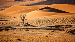 搜尋納米比亞租車優惠價格