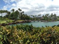 Waikoloa Village hoteles