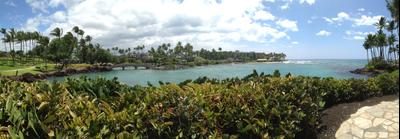 Waikoloa Village hotels