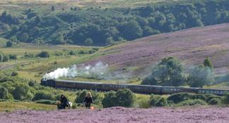 North York Moors, Whitby and The Yorkshire Steam Railway Day Trip from York