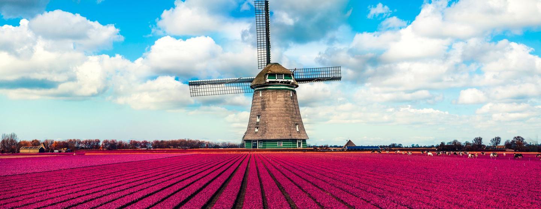 Renta de autos en Holanda