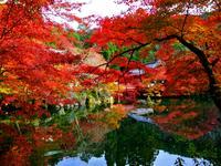 Kioto hotellia