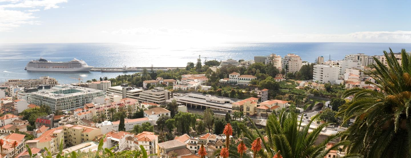 Funchal Pet Friendly Hotels
