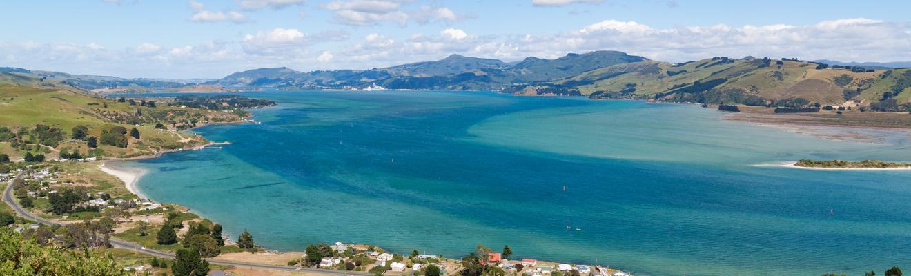 Dunedin hotels
