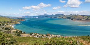 Car Hire in Dunedin