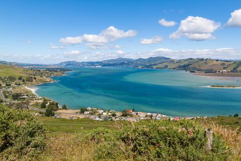 Deals for Hotels in Dunedin