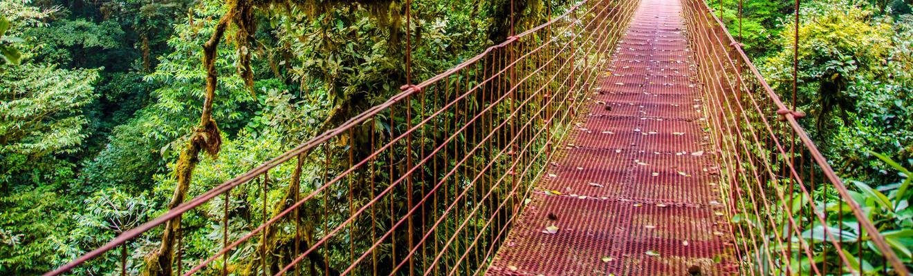 Khách sạn ở Monteverde