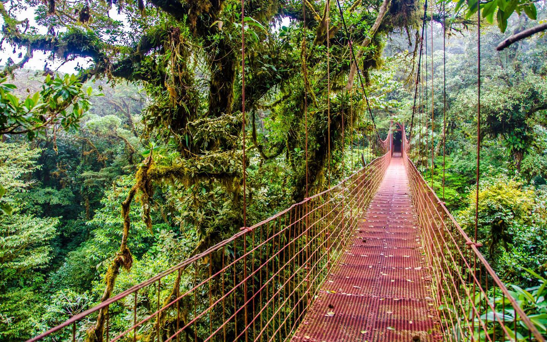 Ξενοδοχεία στην πόλη Monteverde