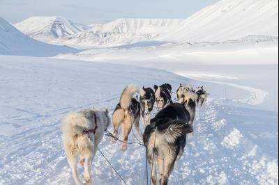 Longyearbyen hotels