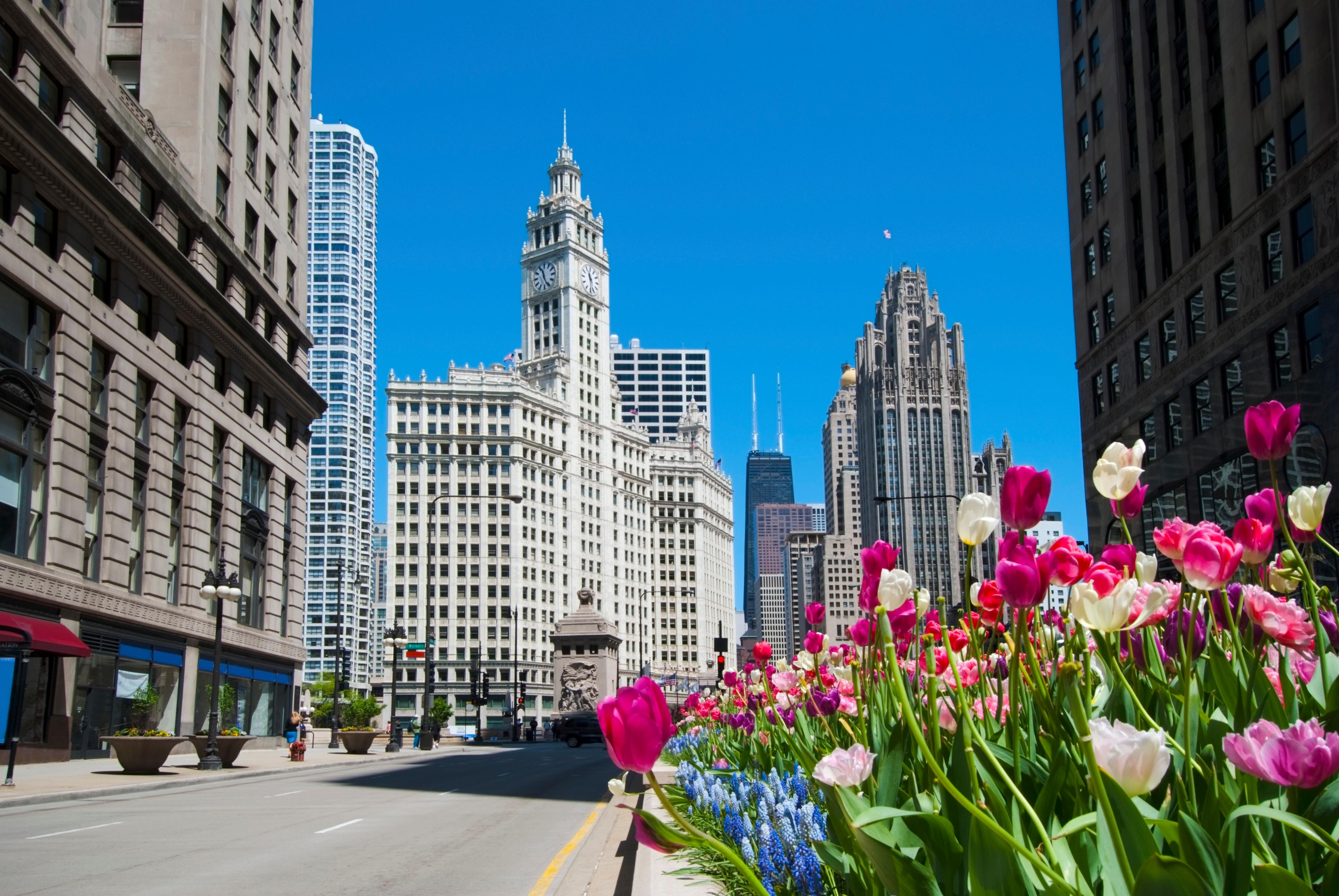 best deals on hotels in chicago downtown