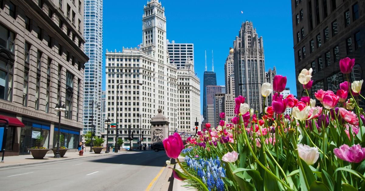 Hotels In Chicago >> 16 Best Hotels In Chicago Hotels From 25 Night Kayak