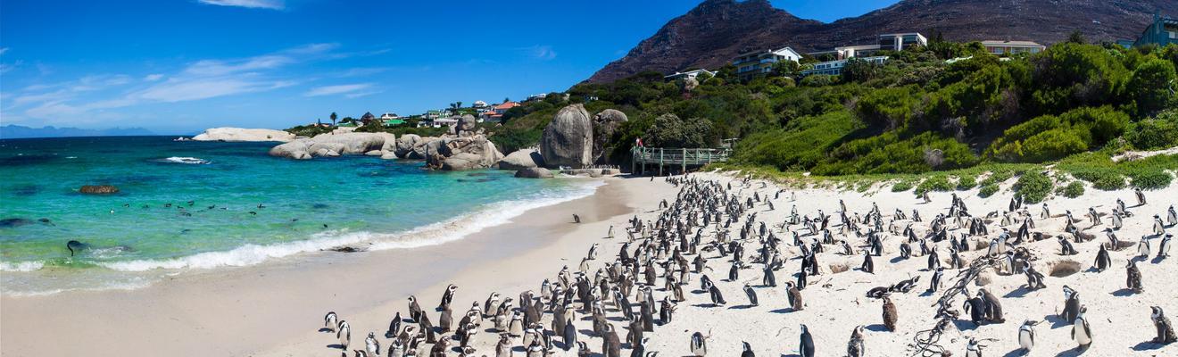 Hotels in Kapstadt
