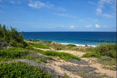 Praia do Tofo hotels
