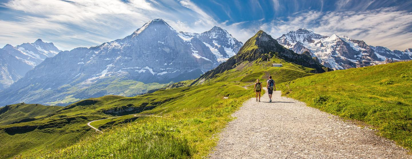 Grindelwald Pet Friendly Hotels