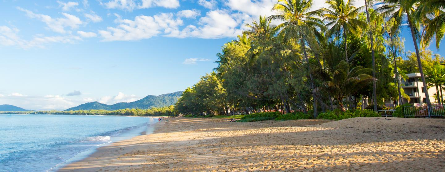 Palm Cove Car Hire
