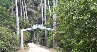 Depuis Zanzibar: excursion dans la forêt de Jozani