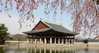Half-Day Korean DMZ Tour from Seoul