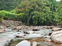 Hôtels à Bentong
