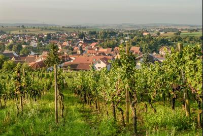 Sinsheim hotels