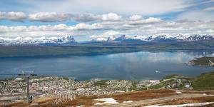 Hyrbil i Narviks kommun